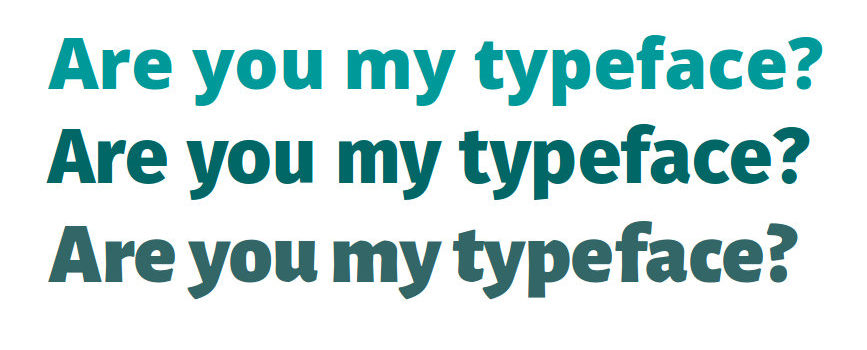 Who are you? Answer in three typefaces.